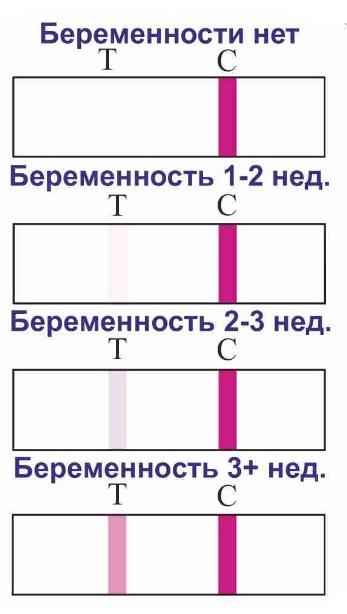 KNOWHEN - прибор тест для определения овуляции по слюне (Тест на беременность книга)