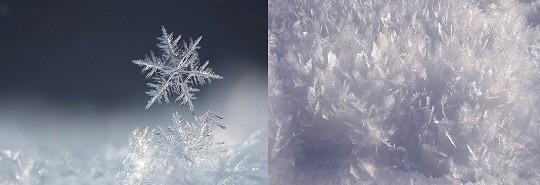 Снег белый света