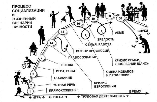 Схема какого процесса изображена на рисунке под действием каких факторов